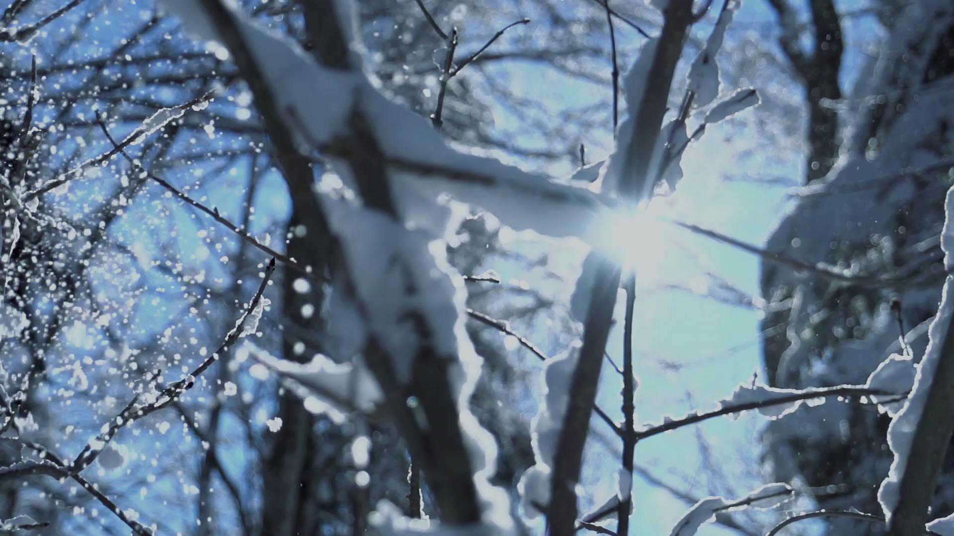 HanRes_Snow